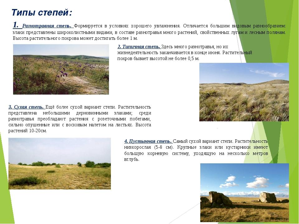 Типы степей: 1. Разнотравная степь. Формируется в условиях хорошего увлажнени...