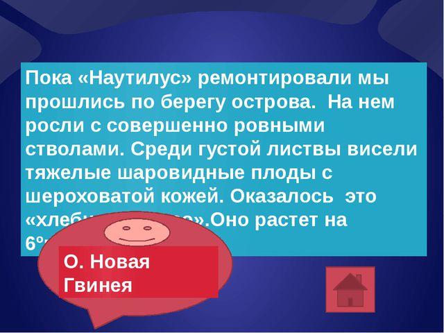 Составила: Учитель географии МБОУ СОШ № 2 Сороквашина Н.Д. Любите географию!!!