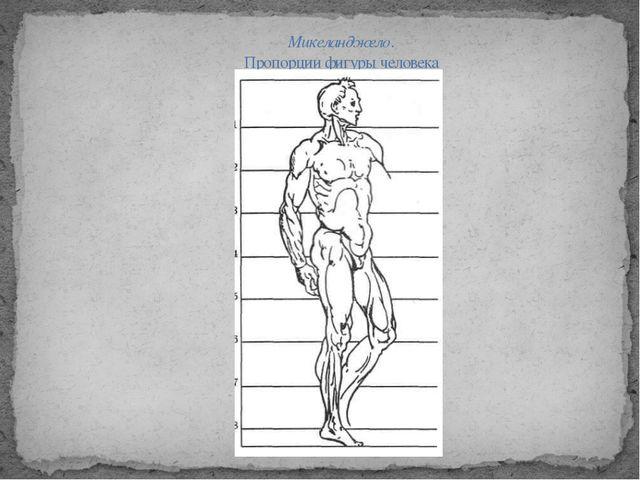 Микеланджело. Пропорции фигуры человека