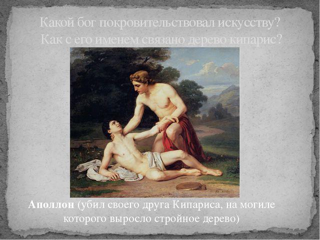 Аполлон (убил своего друга Кипариса, на могиле которого выросло стройное дере...