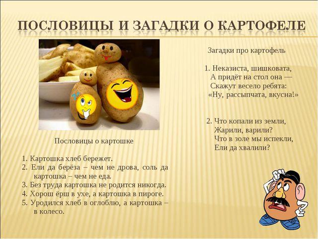 Пословицы о картошке 1. Картошка хлеб бережет. 2. Ели да берёза – чем не дро...