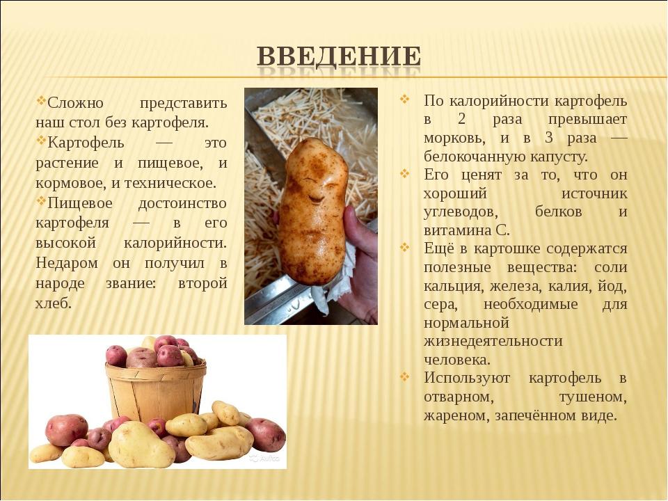 По калорийности картофель в 2 раза превышает морковь, и в 3 раза — белокочанн...
