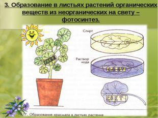 3. Образование в листьях растений органических веществ из неорганических на с