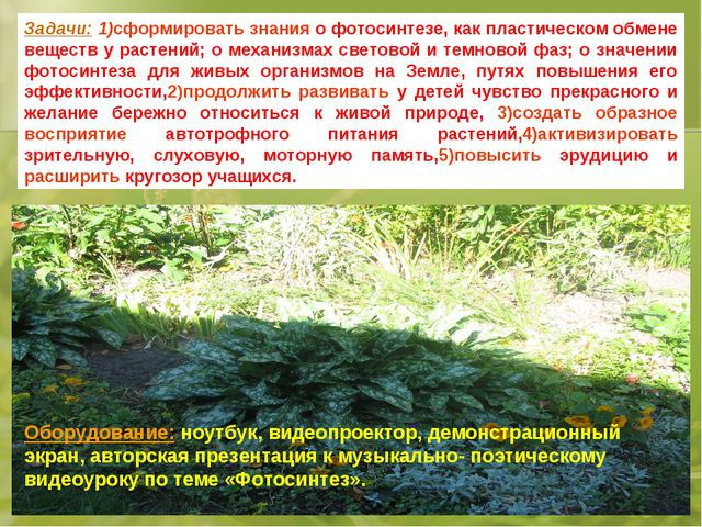 Задачи: 1)сформировать знания о фотосинтезе, как пластическом обмене веществ...