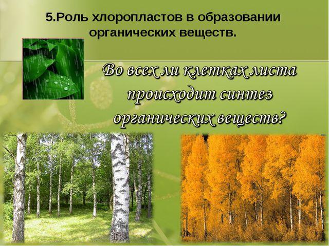 5.Роль хлоропластов в образовании органических веществ.
