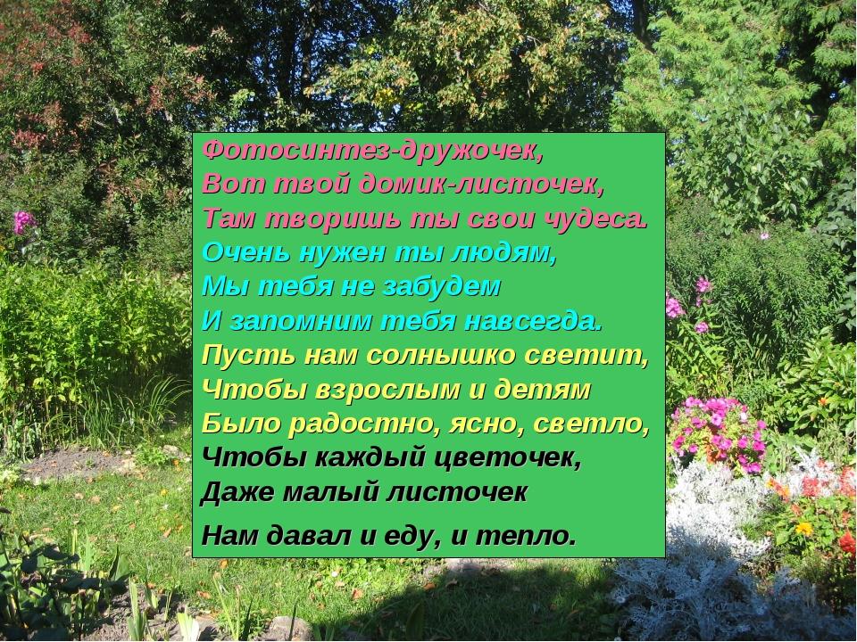 Фотосинтез-дружочек, Вот твой домик-листочек, Там творишь ты свои чудеса. Оче...