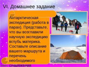 VI. Домашнее задание Антарктическая экспедиция (работа в парах). Представьте,