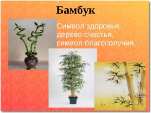 Бамбук Символ здоровья, дерево счастья, символ благополучия.