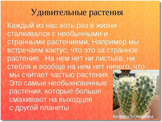 Удивительные растения Каждый из нас хоть раз в жизни сталкивался с необычными...
