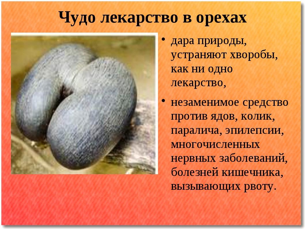 Чудо лекарство в орехах дара природы, устраняют хворобы, как ни одно лекарств...