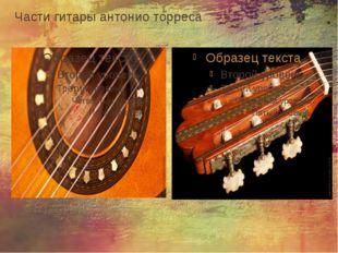 Части гитары антонио торреса
