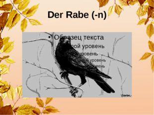 Der Rabe (-n)