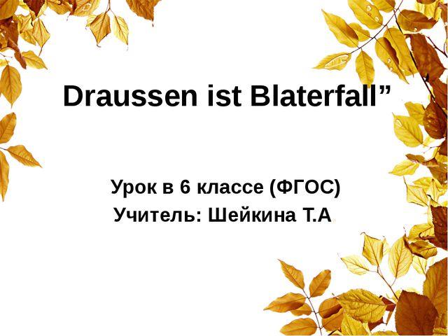 "Draussen ist Blaterfall"" Урок в 6 классе (ФГОС) Учитель: Шейкина Т.А."