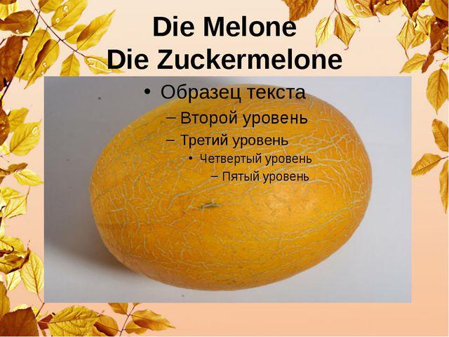 Die Melone Die Zuckermelone