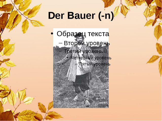Der Bauer (-n)