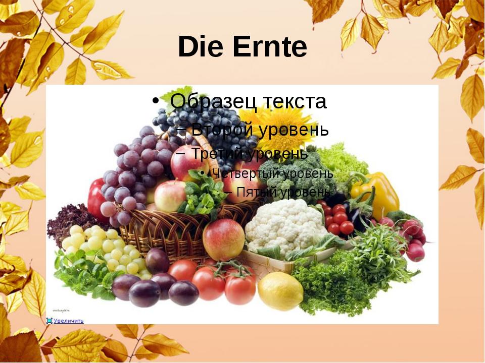 Die Ernte