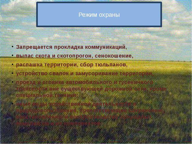 Режим охраны Запрещается прокладка коммуникаций, выпас скота и скотопрогон,...