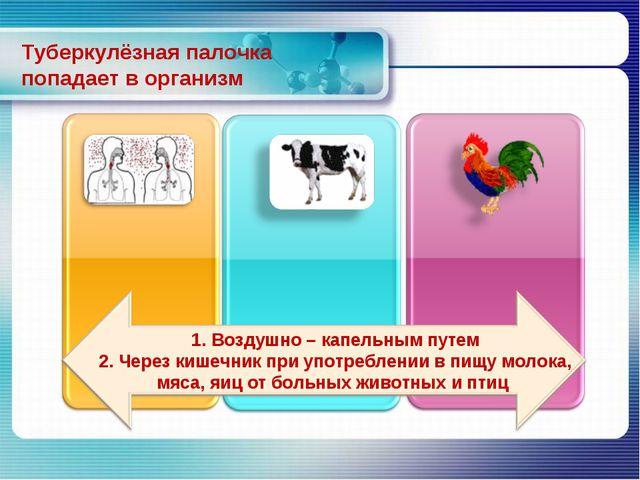 Туберкулёзная палочка попадает в организм 1. Воздушно – капельным путем 2. Че...