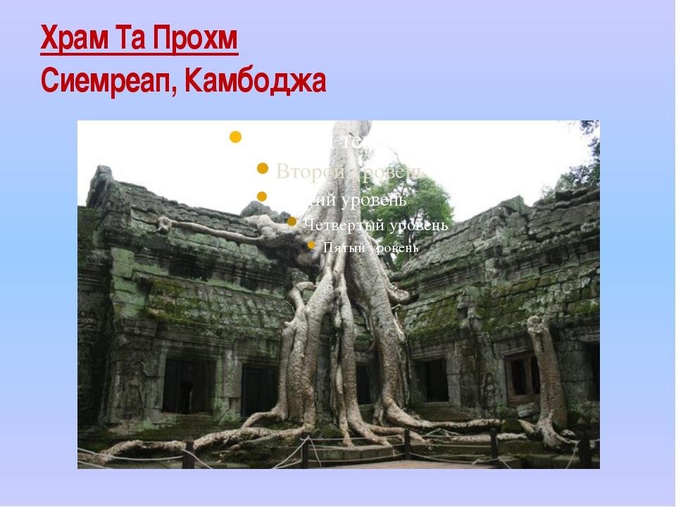 Храм Та Прохм Сиемреап, Камбоджа