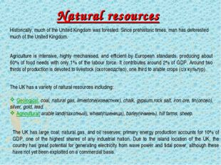 Natural resources Historically, much of the United Kingdom was forested. Sinc