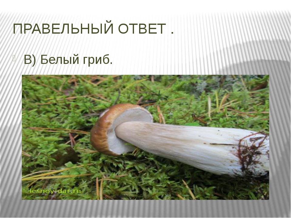 ПРАВЕЛЬНЫЙ ОТВЕТ . В) Белый гриб.