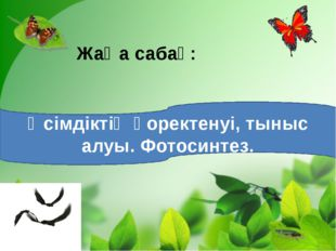 Жаңа сабақ: Өсімдіктің қоректенуі, тыныс алуы. Фотосинтез.