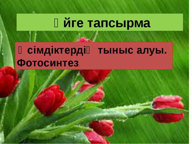 Үйге тапсырма Өсімдіктердің тыныс алуы. Фотосинтез.
