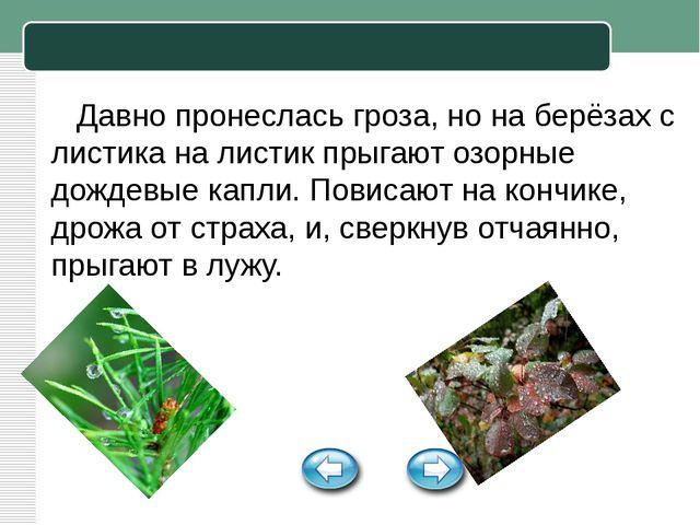 Давно пронеслась гроза, но на берёзах с листика на листик прыгают озорные до...