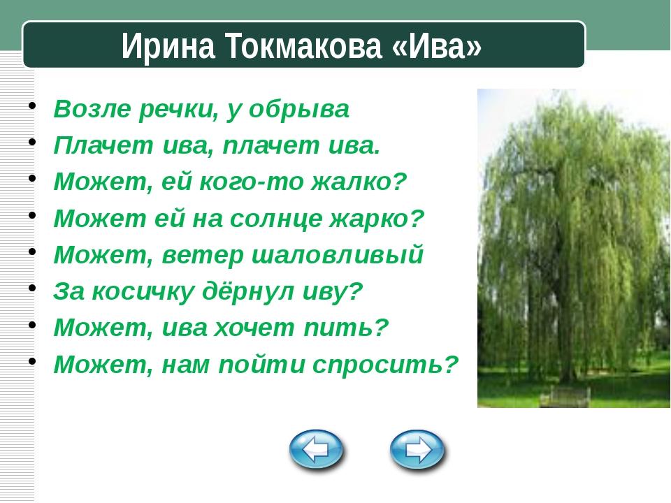 Ирина Токмакова «Ива» Возле речки, у обрыва Плачет ива, плачет ива. Может, е...