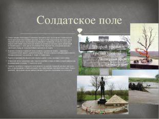 Солдатское поле Северо-западнее Волгограда (Сталинград) находится поле, где в