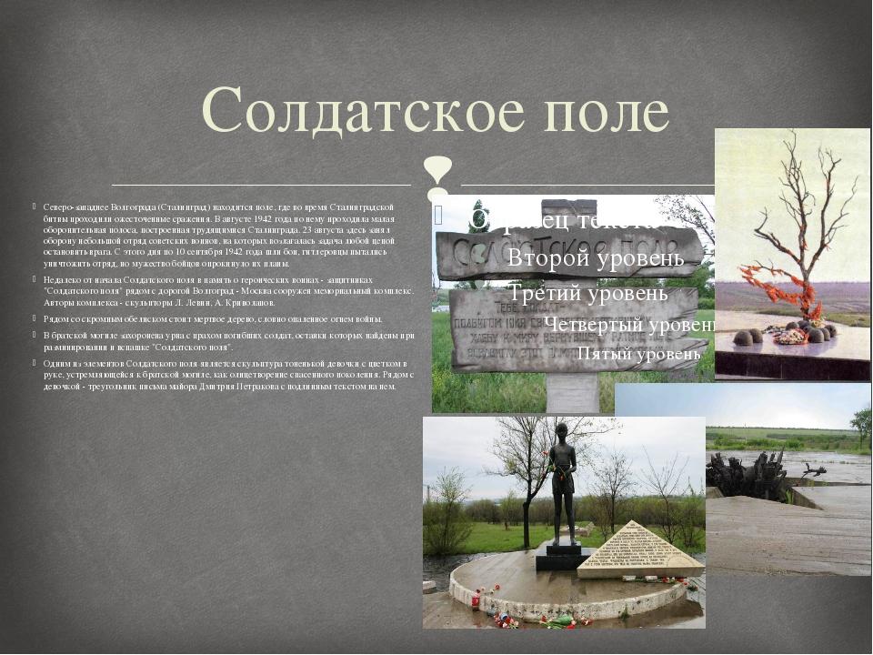 Солдатское поле Северо-западнее Волгограда (Сталинград) находится поле, где в...