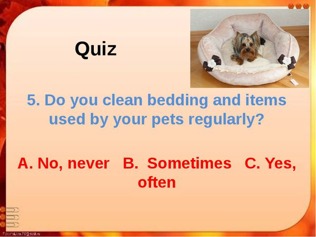 Quiz 5. Do you clean bedding and items used by your pets regularly? A. No, ne...