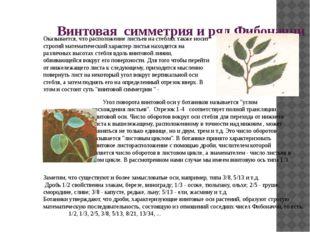 «Пристальное и глубокое изучение природы есть источник самых плодотворных отк
