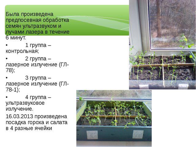 Была произведена предпосевная обработка семян ультразвуком и лучами лазера в...