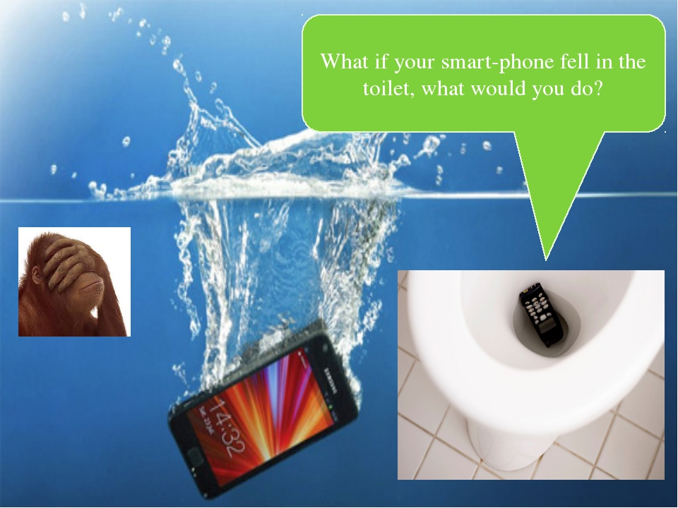 What if your smart-phone fell in the toilet, what would you do?