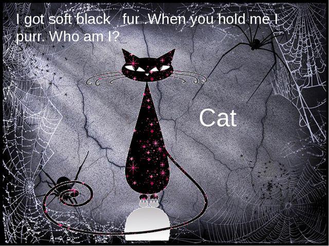 I got soft black fur .When you hold me I purr. Who am I? Cat