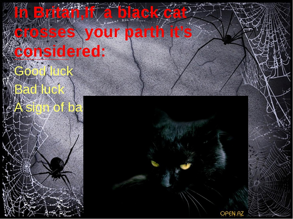 In Britan,If a black cat crosses your parth it's considered: Good luck Bad l...