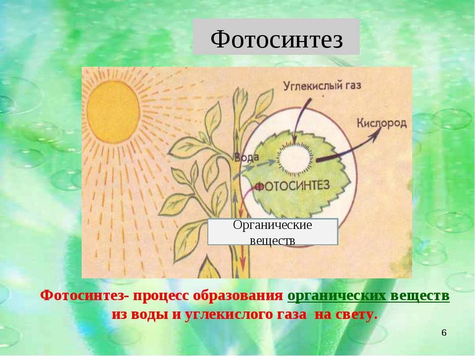 Органические веществ * Фотосинтез- процесс образования органических веществ и...