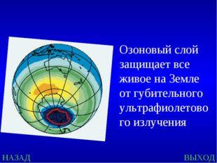 Озоновый слой защищает все живое на Земле от губительного ультрафиолетового