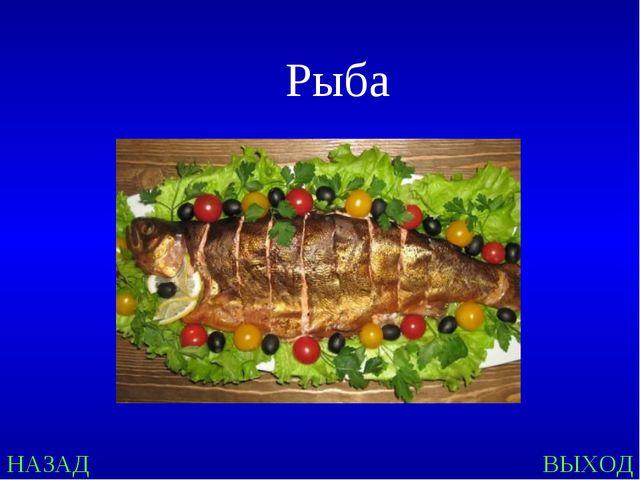 Рыба НАЗАД ВЫХОД