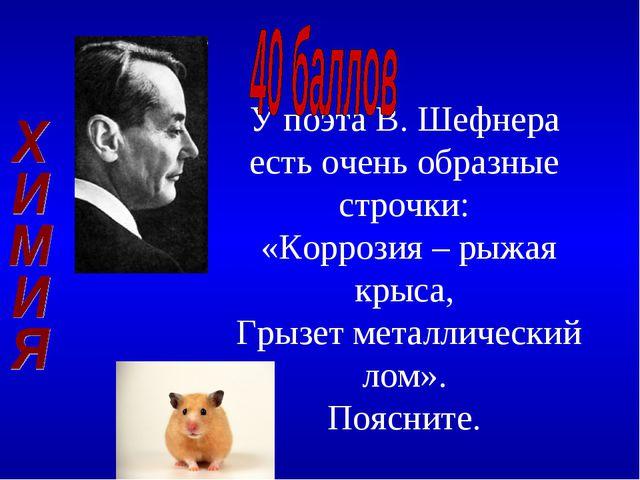 У поэта В. Шефнера есть очень образные строчки: «Коррозия – рыжая крыса, Грыз...