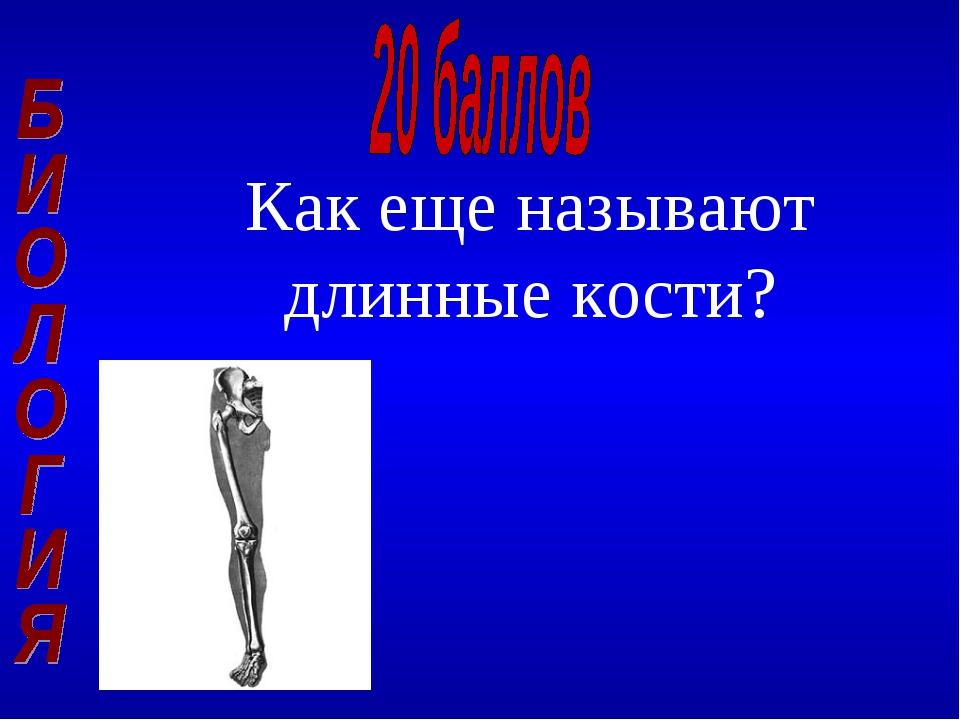 Как еще называют длинные кости?