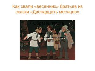 Как звали «весенних» братьев из сказки «Двенадцать месяцев»