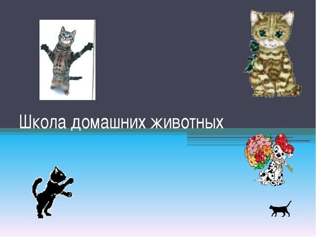 Школа домашних животных