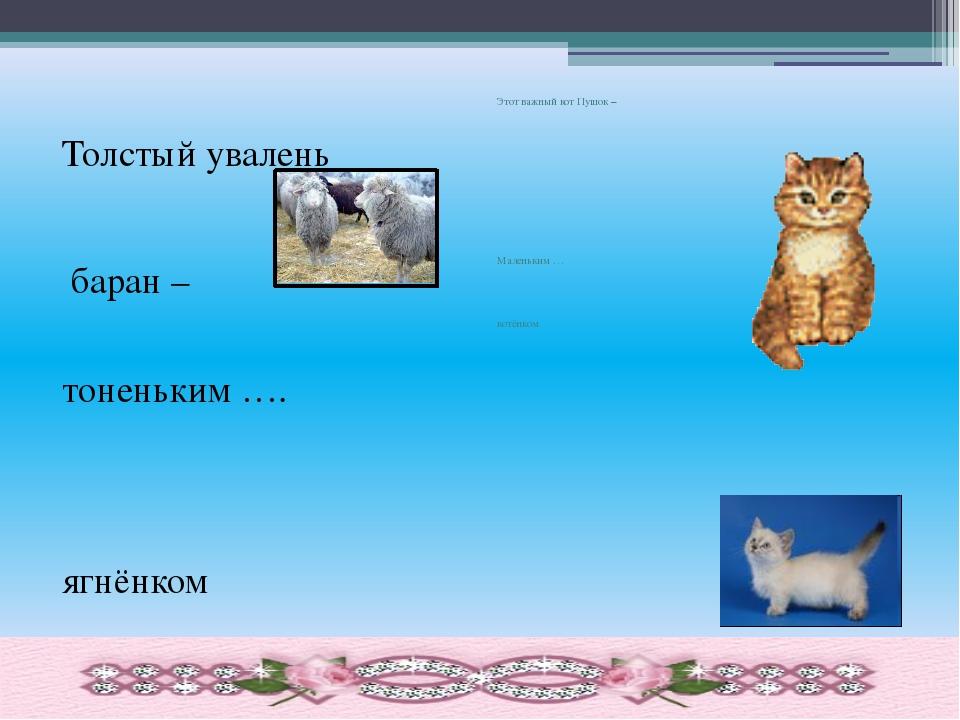 Толстый увалень баран – тоненьким …. ягнёнком Этот важный кот Пушок – Малень...