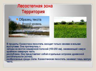 Лесостепная зона Территория В пределы Казахстана лесостепь заходит только св