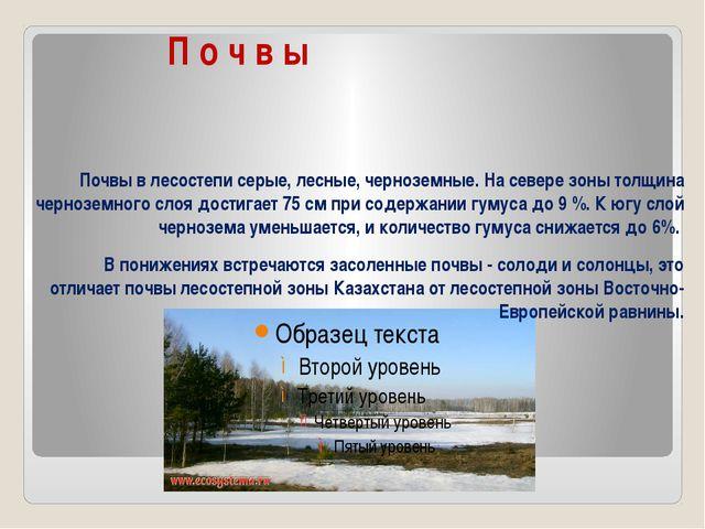 П о ч в ы Почвы в лесостепи серые, лесные, черноземные. На севере зоны толщи...