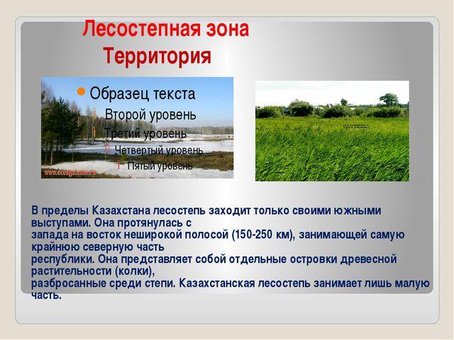 Лесостепная зона Территория В пределы Казахстана лесостепь заходит только св...