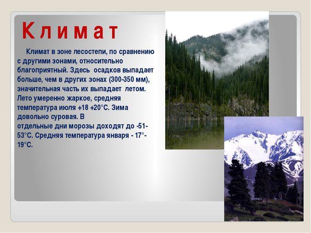 К л и м а т Климат в зоне лесостепи, по сравнению с другими зонами, относител...