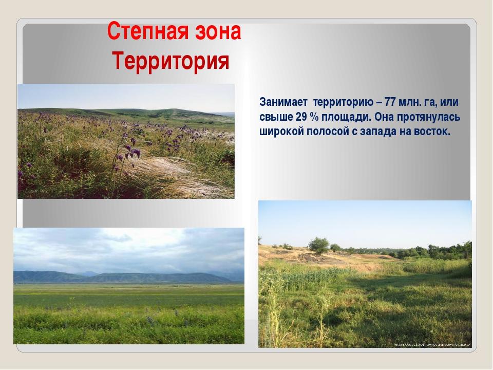 Степная зона Территория Занимает территорию – 77 млн. га, или свыше 29 % пло...